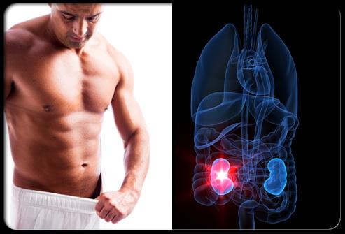 腎虚による精力減退