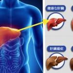 肝臓デトックス法!レバーフラッシュを超える肝臓洗浄の正しいやり方はコレ!