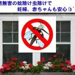天然無害の蚊除け虫除けで妊婦、赤ちゃんも安心