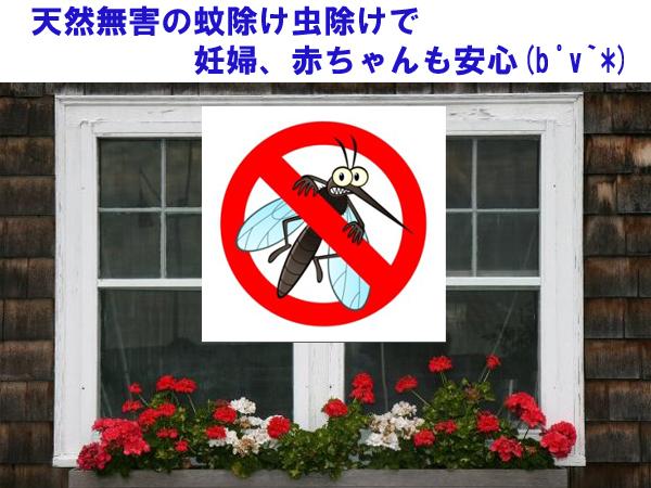 天然無害の蚊除け