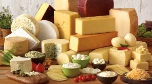 チーズ種類別たんぱく質量