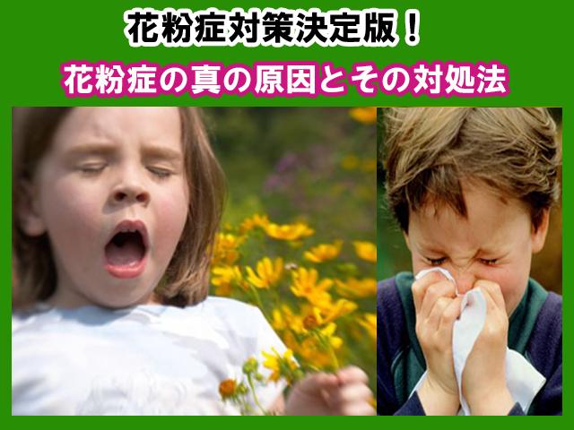 花粉症対策決定版