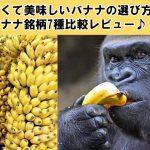 甘くて美味しいバナナの選び方とバナナ銘柄7種比較レビュー♪