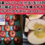 無農薬ふじリンゴ小玉1玉356円!年間30箱近くリンゴを購入するリンゴマニアがズバッとレビュー♪